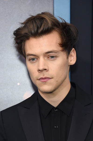 Harry Styles Net Worth $50 million