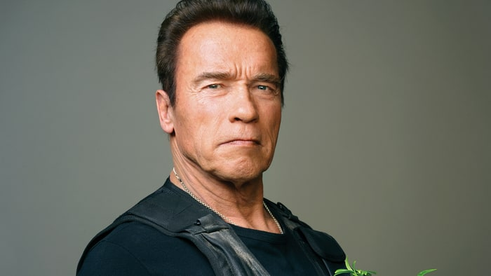 Arnold Schwarzenegger Net Worth $300 million