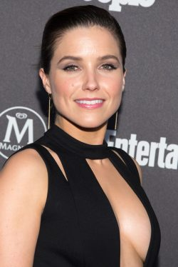 Sophia Bush Net Worth $9 million