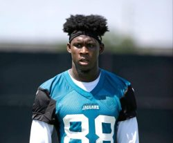 Allen Hurns Net Worth $1 million