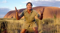 Steve Irwin Net Worth $40 million